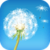 Dandelion Fun icon