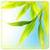Galaxy Leaf Live HD Wallpaper app for free