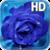 Blue Rose Drops Live Wallpaper app for free