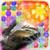 Diamond Crush Game icon