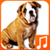 Talking Dog Sounds New icon