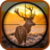 Hunting Animals Jungle app for free