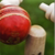 Chauka Cricket Scoring App app for free