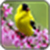 Note 2 IMage Every day is different and new wallpa app for free