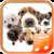 Dog sounds app app for free
