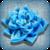 Handmade Flowers app for free