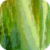 Greeny Waterfall Live Wallpaper icon