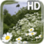 Chamomile Field Live Wallpaper app for free