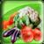 Veggie Fun app for free