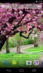 Sakura Live Wallpaper 3D parallax effect screenshot 3/4