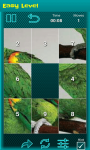 Bird Picture Puzzle screenshot 3/6