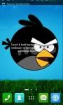 Angry Bird Wallpapers screenshot 5/6