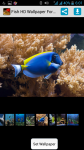 Fish HD Wallpaper For Walls screenshot 1/4
