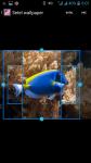 Fish HD Wallpaper For Walls screenshot 3/4