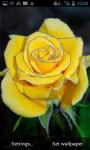 Yellow Rose LWP screenshot 2/3