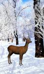 Deer Snow Live Wallpaper screenshot 3/4