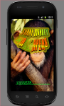 Funny Monkey Wallpapers screenshot 3/3
