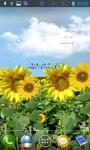 Sunflowers lwp screenshot 3/4