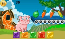 Funny Pig Feeding screenshot 2/6
