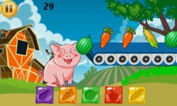 Funny Pig Feeding screenshot 3/6