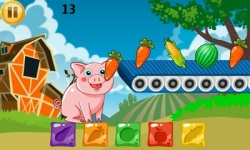 Funny Pig Feeding screenshot 4/6