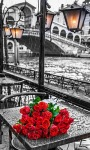 Roses Bouquet Live Wallpaper screenshot 2/3
