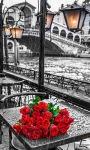 Roses Bouquet Live Wallpaper screenshot 3/3