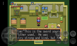 Crusader of Centy screenshot 2/4