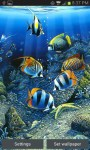 Colorful Fish Live Wallpaper Free screenshot 3/3