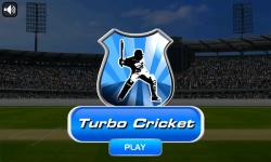 Turbo Cricket screenshot 1/3