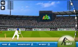 Turbo Cricket screenshot 2/3
