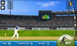 Turbo Cricket screenshot 3/3