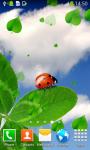 Ladybug Live Wallpapers Top screenshot 4/6