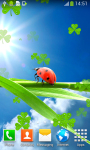 Ladybug Live Wallpapers Top screenshot 6/6