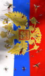 Russia flag free screenshot 2/5