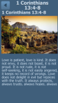 Bible Verses About Love screenshot 1/6