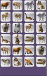 Animal Puzzle Memory For Kids screenshot 3/5