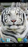 Best White Tiger Wallpaper HD screenshot 1/3