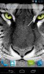 Best White Tiger Wallpaper HD screenshot 2/3