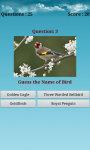 Birds Puzzle Game screenshot 3/4