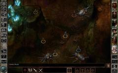 Icewind Dale Enhanced Edition swift screenshot 1/6