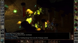 Icewind Dale Enhanced Edition swift screenshot 5/6