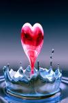 Love Hate Relationship screenshot 2/4
