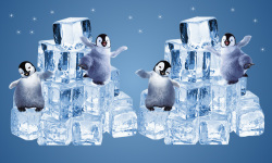 Happy penguins on ice cubes screenshot 1/2