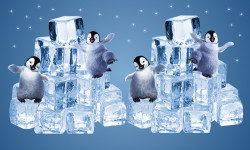 Happy penguins on ice cubes screenshot 2/2