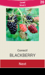 Fruit And Vegetable Names screenshot 2/6