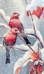 Snow Birds live Wallpaper screenshot 1/3