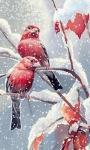 Snow Birds live Wallpaper screenshot 2/3