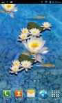 3D fish Pond Live wallpaper screenshot 1/3