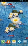 3D fish Pond Live wallpaper screenshot 3/3